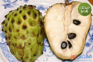 تعرف علي فوائد فاكهة القشطة العديدة لجسم الإنسان