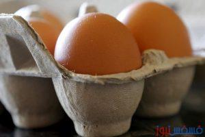 صور وفيديو.. طريقة مبتكرة لفصل صفار البيضة عن باقي مكوناتها