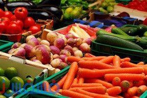 وزارة الزراعة.. ارتفاع صادرات مصر إلي مليون و 650 ألف طن من الخضروات والفواكه
