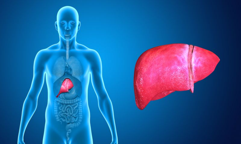 Photo of تنظيف الدم والكبد والكلى بوصفة طبيعية