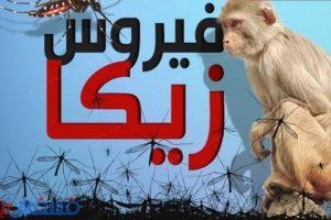 أخبار الجزائر اليوم : الجزائر تتصدي لفيروس زيكا