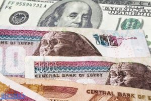 أسعار الدولار اليوم السبت 5-11-2016 في السوق السوداء سعر الدولار بعد تعويم الجنيه اليوم