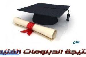 البوابة المصرية للدبلومات الفنية .. ظهرت الآن نتيجة الدبلومات الفنية على موقع اليوم السابع (زراعي-تجاري-صناعي) وزارة التربية والتعليم