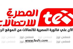فاتورة التليفون المنزلي سبتمبر 2017 مجاناً المصرية للاتصالات الإستعلام عن فاتورة التليفون الأرضي الجديدة 2017