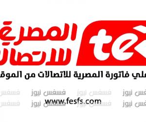 قيمة الأسعار الجديدة في فاتورة التليفون الأرضي يناير 2018 المصرية للاتصالات الاستعلام عن فاتورة التليفون الأرضي الجديدة 2018