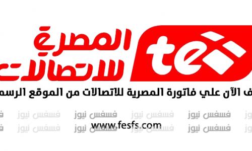 قيمة الأسعار الجديدة في فاتورة التليفون الأرضي أكتوبر 2017 المصرية للاتصالات الإستعلام عن فاتورة التليفون الأرضي الجديدة 2017