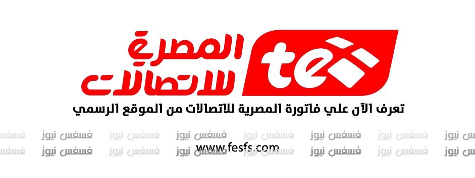 فاتورة التليفون الأرضي من المصرية للاتصالات أبريل 2017 أستعلم الآن سدد فاتورة التليفون الأرضي المنزلي