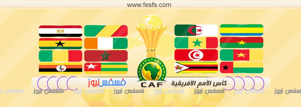 كأس الأمم الأفريقية الجابون 2017  (فوز الكاميرون)