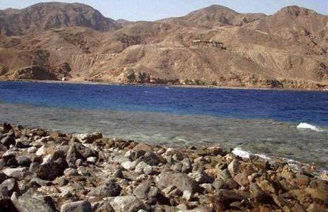 ضبط مافيا سودانية تسرق الذهب من جبال البحر الأحمر