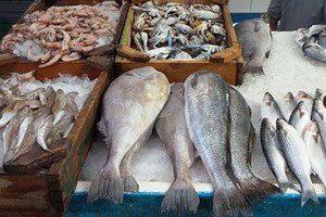 أسعار السمك نار… إضراب في الأسكندريه وبورسعيد ودمياط