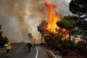 62 قتيلاً في حريق هائل وسط البرتغال و الحكومة تعلن الحداد