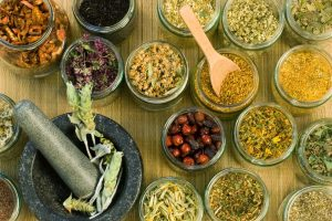 إليكم أهم الأعشاب المستخدمة في علاج العديد من الأمراض