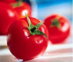 فوائد تناول الطماطم