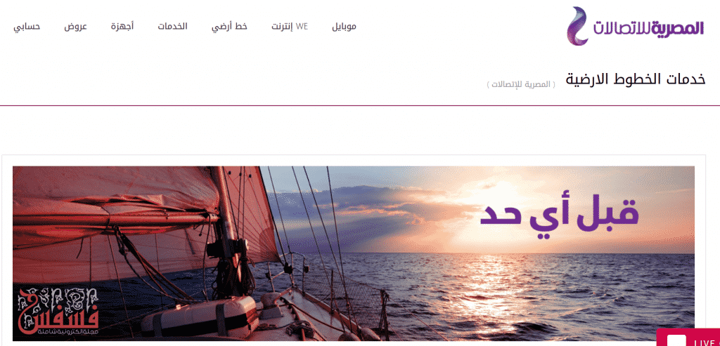 معرفة فاتورة التليفون الأرضي من المصرية للاتصالات